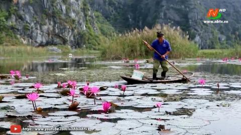 Phim tài liệu: Khát vọng Ninh Bình