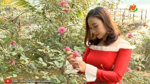 Trang văn nghệ quê hương: Tiếng hát cô giáo Thanh Thủy