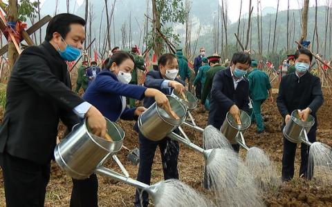 Ninh Bình phát động Tết trồng cây Xuân Tân Sửu 2021