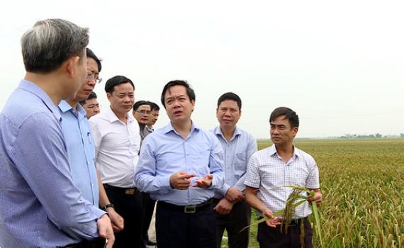 Đồng chí Phạm Quang Ngọc kiểm tra sản xuất và giải ngân vốn đầu tư công tại Kim Sơn, TP Ninh Bình