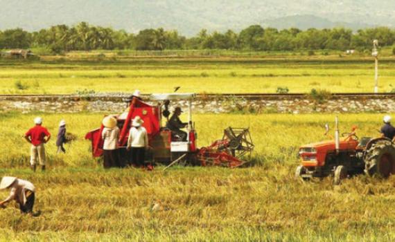 """Góp ý văn kiện: Nông dân phải hiểu """"phát triển bền vững"""" là gì"""