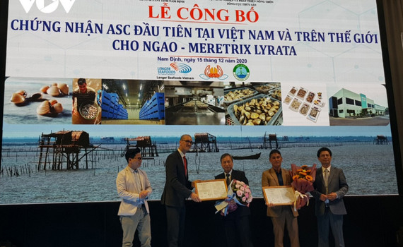 Lần đầu tiên trên thế giới, ngao Việt Nam được chứng nhận ASC
