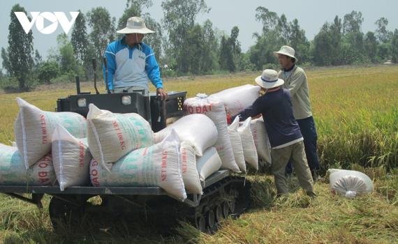Ngành nông nghiệp vẫn ghi kỷ lục mới dù thiên tai, dịch bệnh
