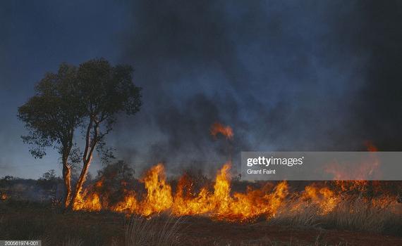 Ngành du lịch Australia thiệt hại 4,5 tỷ USD vì cháy rừng