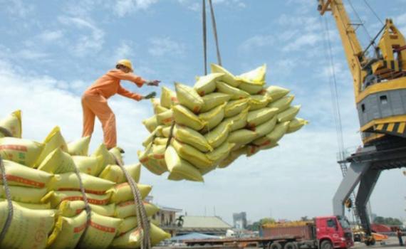 Hàn Quốc áp thuế 513% đối với gạo nhập khẩu ngoài hạn ngạch