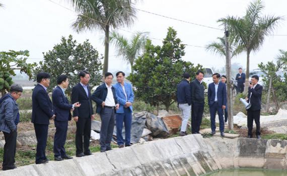 Thẩm định huyện Yên Mô đạt chuẩn nông thôn mới