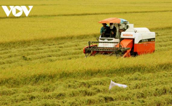 """Nông nghiệp vượt qua """"nguy cơ kép"""" hướng đến thị trường mới"""