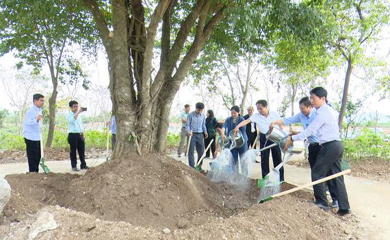 Sở NN&PTNT hưởng ứng chương trình trồng 1 tỷ cây xanh