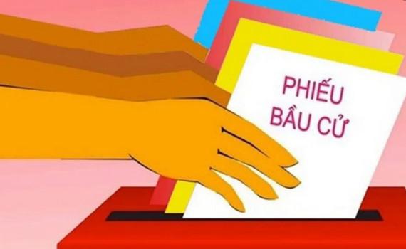Hỏi - Đáp về bầu cử: Những trường hợp nào cử tri chỉ được tham gia bầu cử ĐBQH và đại biểu HĐND cấp tỉnh?