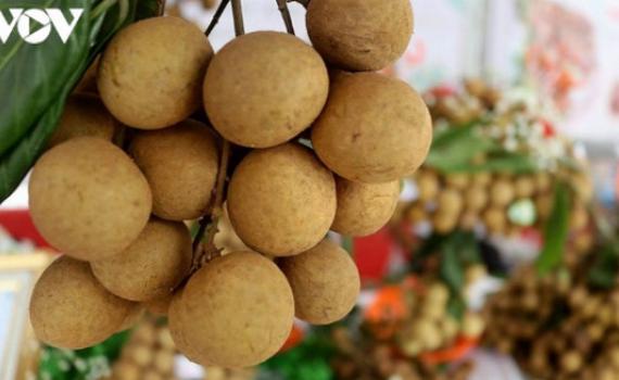 Hoa quả Việt Nam xuất khẩu trở lại sang Mỹ