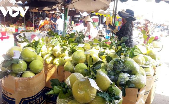 Xuất khẩu hoa quả vào Trung Quốc: Nhiều kì vọng mới