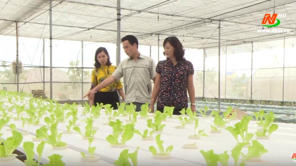Khoa học kỹ thuật và Công nghệ: Yên Khánh ứng dụng khoa học kỹ thuật vào sản xuất nông nghiệp