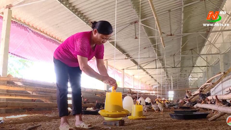 Vì chất lượng cuộc sống: Chăn nuôi an toàn sinh học - Bảo vệ môi trường