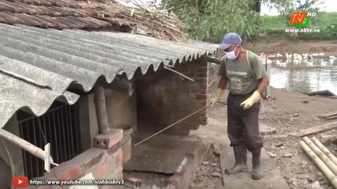Bạn nhà nông: Kỹ thuật phòng chống dịch tả lợn Châu Phi