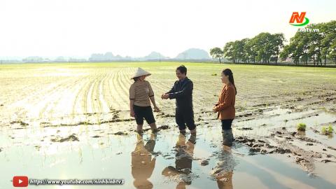 Bạn nhà nông: Xuống đồng cùng nhà nông