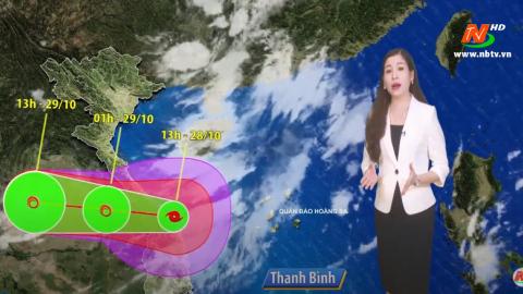 Bản tin Dự báo thời tiết mới nhất ngày - 29/10/2020