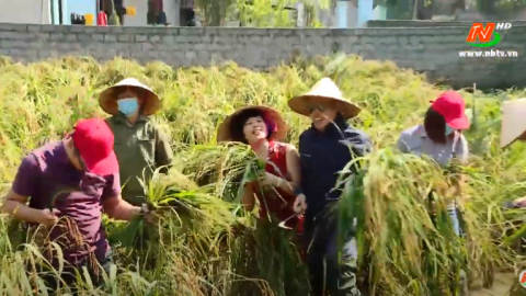 Du lịch nông nghiệp hút khách tại Ninh Bình