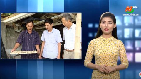 Hiệu quả mô hình nuôi ốc nhồi giống tại Ninh Vân mang lại hiệu quả kinh tế cao