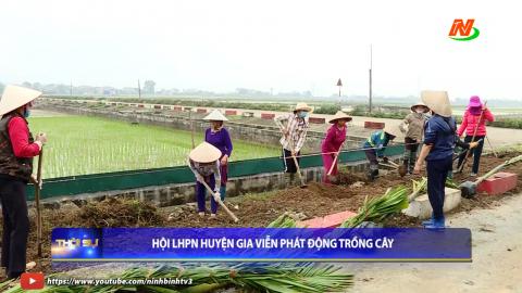 Hội Liên hiệp phụ nữ Gia Viễn phát động trồng cây
