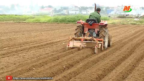 Khoa học kỹ thuật và Công nghệ: Ứng dụng Khoa học công nghệ trong sản xuất rau màu ở Yên Thái