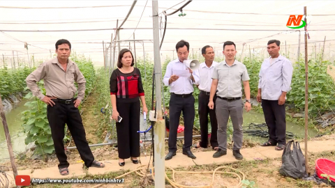 Liên minh hợp tác xã Ninh Bình - Phát huy vai trò nòng cốt phát triển kinh tế tập thể
