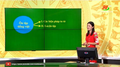 Môn Ngữ văn - Lớp 9: Ôn tập Tiếng Việt - Tiết 2 | Dạy học trên Truyền hình