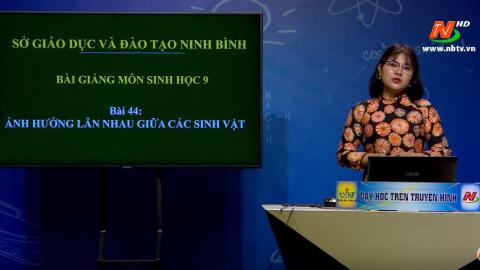 Môn Sinh học - Lớp 9: Ảnh hưởng lẫn nhau giữa các sinh vật | Dạy học trên Truyền hình