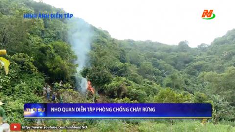 Nho Quan diễn tập phòng chống cháy rừng