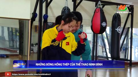 Những bông hồng thép của thể thao Ninh Bình