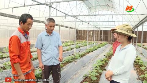 Những vấn đề cử tri quan tâm: Hướng tới nền Nông nghiệp bền vững