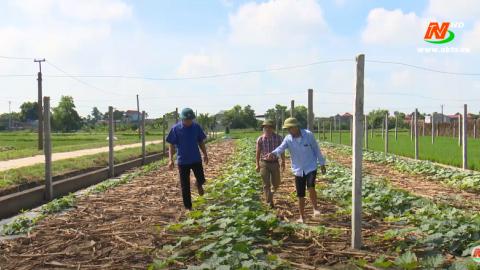 Những vấn đề cử tri quan tâm: Nâng cao hiệu quả hoạt động của các hợp tác xã nông nghiệp