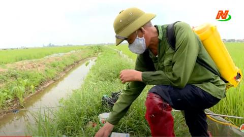 Những vấn đề cử tri quan tâm: Quan tâm, thu gom, xử lý rác thải nguy hại trong nông nghiệp