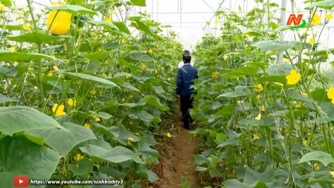 Những vấn đề cử tri quan tâm: Tiếp tục thực hiện chính sách hỗ trợ phát triển nông nghiệp