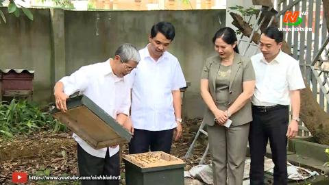 Phát triển nuôi ong lấy mật ở xã Cúc Phương