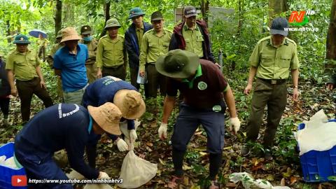 Sự trở lại rừng của các loài động vật hoang dã