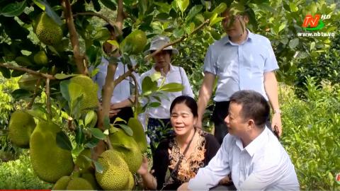 Tạp chí du lịch: Tiềm năng phát triển du lịch nông thôn ở Ninh Bình
