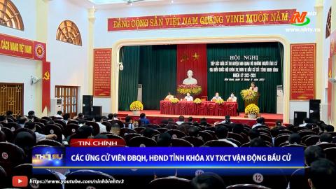 Thời sự Tối Ninh Binh TV - 13/05/2021