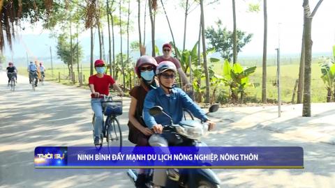 Thời sự Trưa NinhBinh TV - 02/4/2021
