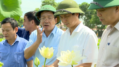 Thời sự Trưa NinhBinh TV - 10/07/2020