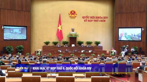 Thời sự Trưa NinhBinh TV - 20/05/2020