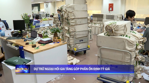 Thời sự Trưa NinhBinh TV - 20/09/2020