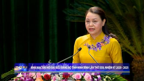 Thời sự Trưa NinhBinh TV - 21/10/2020