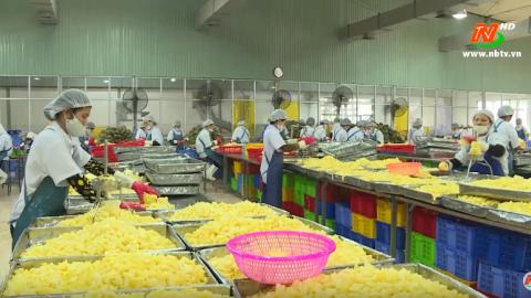 Truyền hình thành phố Tam Điệp: Tạo bước đột phá trong phát triển nông nghiệp ở thành phố Tam Điệp