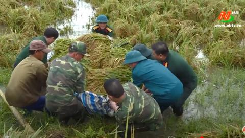 Văn hóa và đời sống: Bộ đội Cụ Hồ - Một giá trị độc đáo của văn hóa Việt Nam