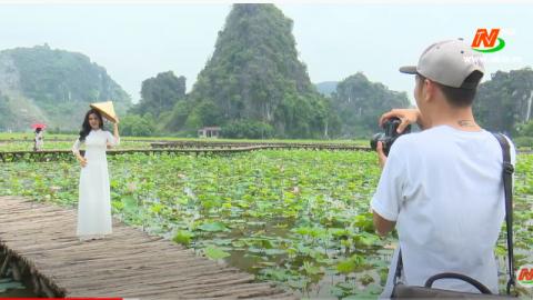 Văn hóa và đời sống: Hoa Sen trong văn hóa Việt Nam