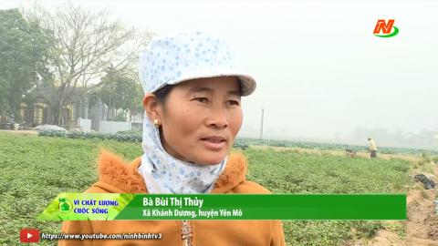 Vì chất lượng cuộc sống: Khánh Dương ứng dụng KHKT trong sản xuất nông nghiệp