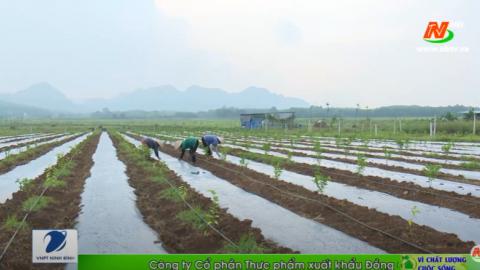 Vì chất lượng cuộc sống: Làm đất trong sản xuất nông nghiệp hữu cơ
