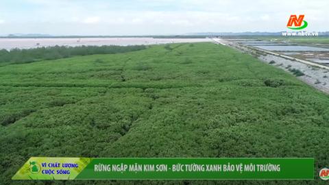 Vì chất lượng cuộc sống:Rừng ngập mặn Kim Sơn - Bức tường xanh bảo vệ môi trường