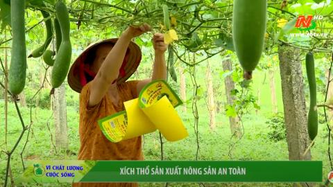 Vì chất lượng cuộc sống: Xích Thổ sản xuất nông nghiệp an toàn