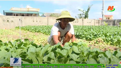 Vì chất lượng cuộc sống: Xu hướng sản xuất và tiêu dùng thực phẩm an toàn